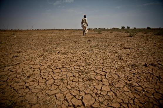 De verwoestijning slaat hard toe. En als het regent, vallen er zulke hoeveelheden dat zaad en landbouwgrond wegspoelen. (Foto Oxfam International)
