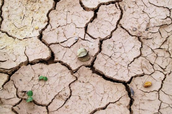 Water wordt stilaan een kostbaar goed in onze contreien
